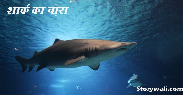 shark-ka-chara-moral-hindi-story